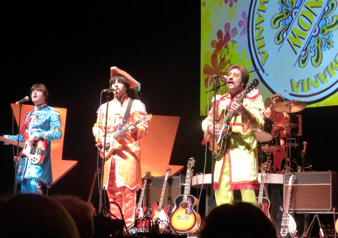 Sargent Pepper costumes